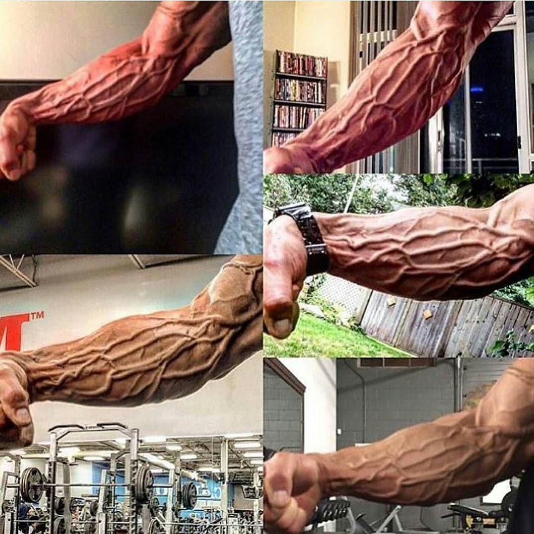 Veins popping like.. Best gym workout