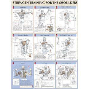 Bodyweight strength training anatomy pdf download