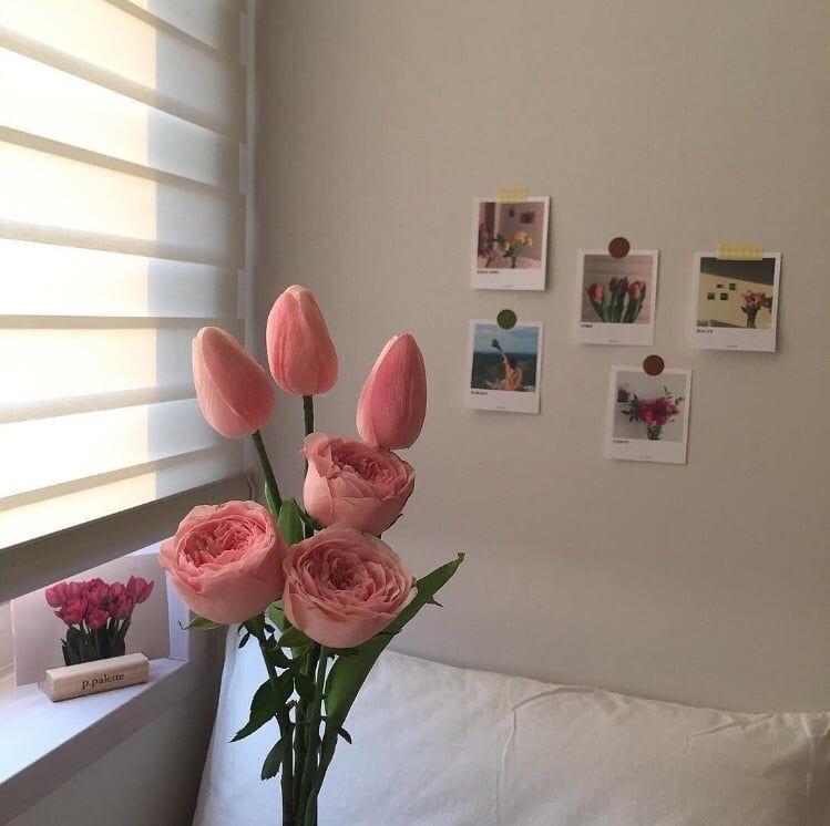 Best Soft Room Aesthetic 400 x 300