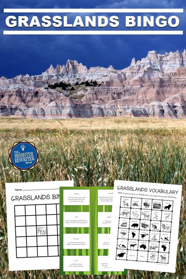 Grasslands Bingo Bingo, Learning games for kids, Bingo