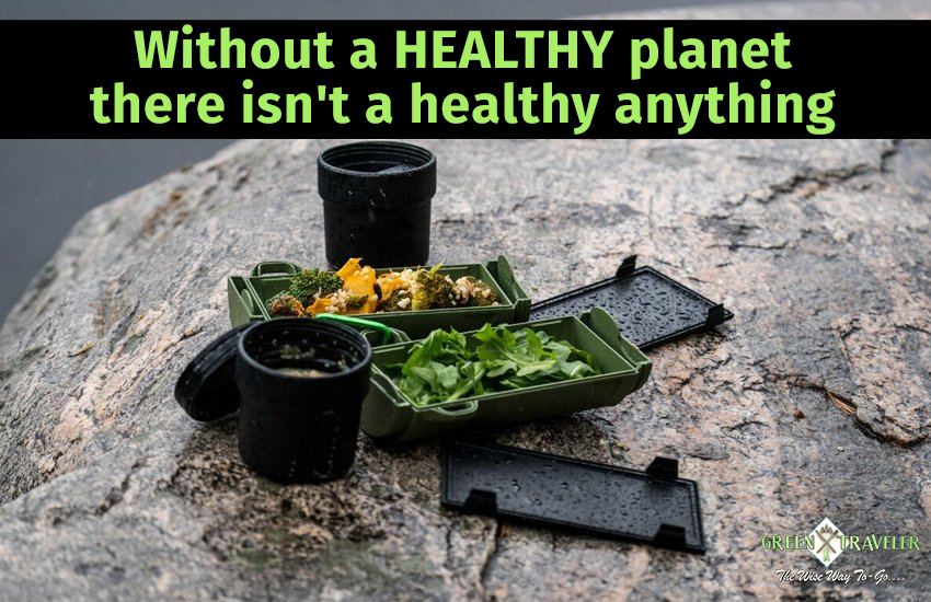 Eat healthy in our eco-friendly GreenTraveler food container to save the planet     #healthy #ecofriendly #greentraveler #food #container #planet