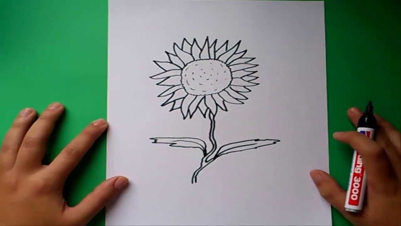 Como dibujar un girasol paso a paso | How to draw a sunflower
