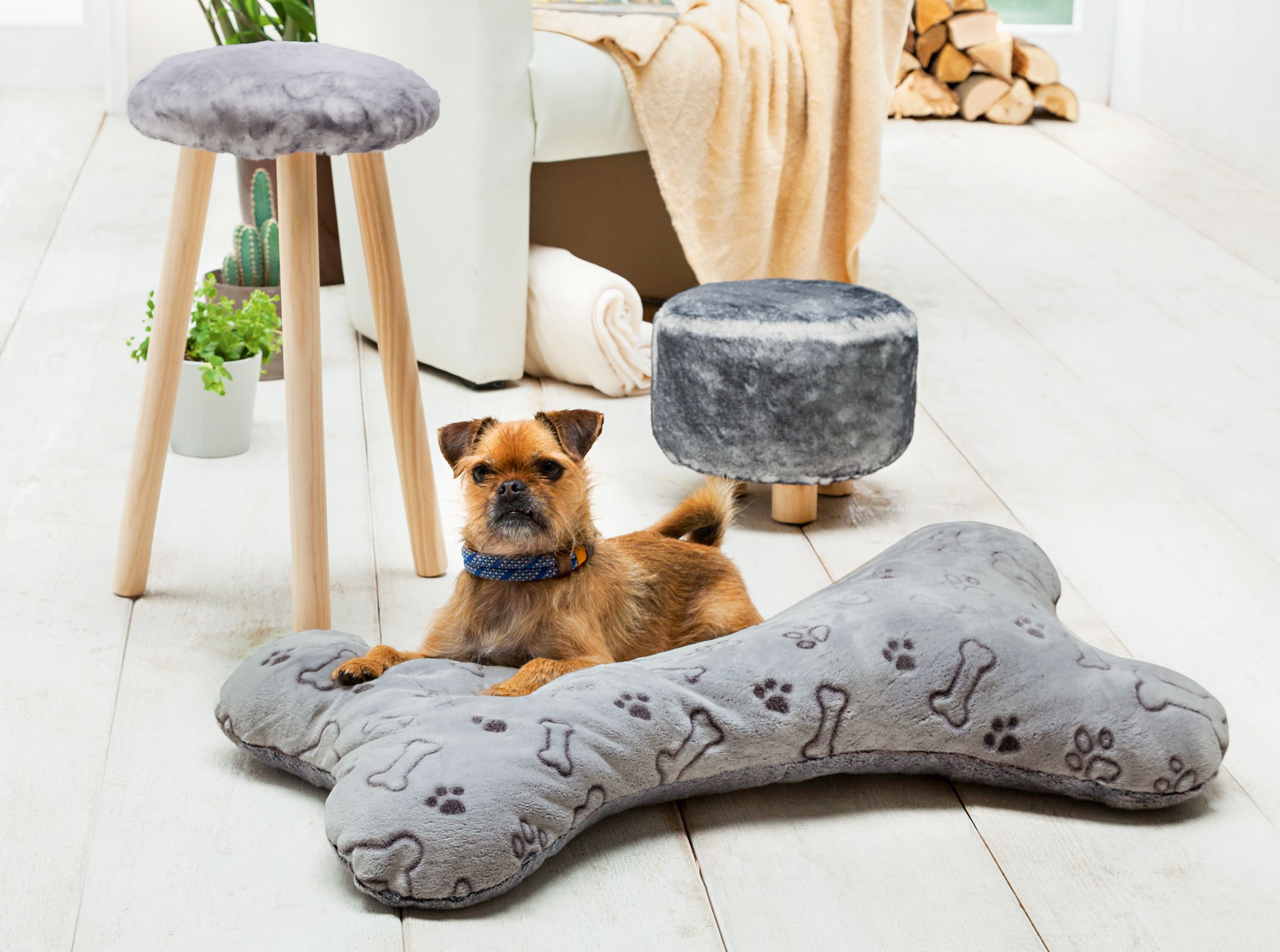 anleitung knochen kissen f r hunde n hen n hen. Black Bedroom Furniture Sets. Home Design Ideas