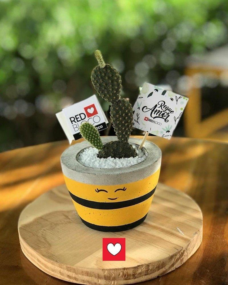 e74b26912a1  RedBloco  RegueAmor  EspalheAmor  Cactus  Suculentas  NovosTerrários   Novidades  NovosFormatos  Vasinhos  FeitosAmão…