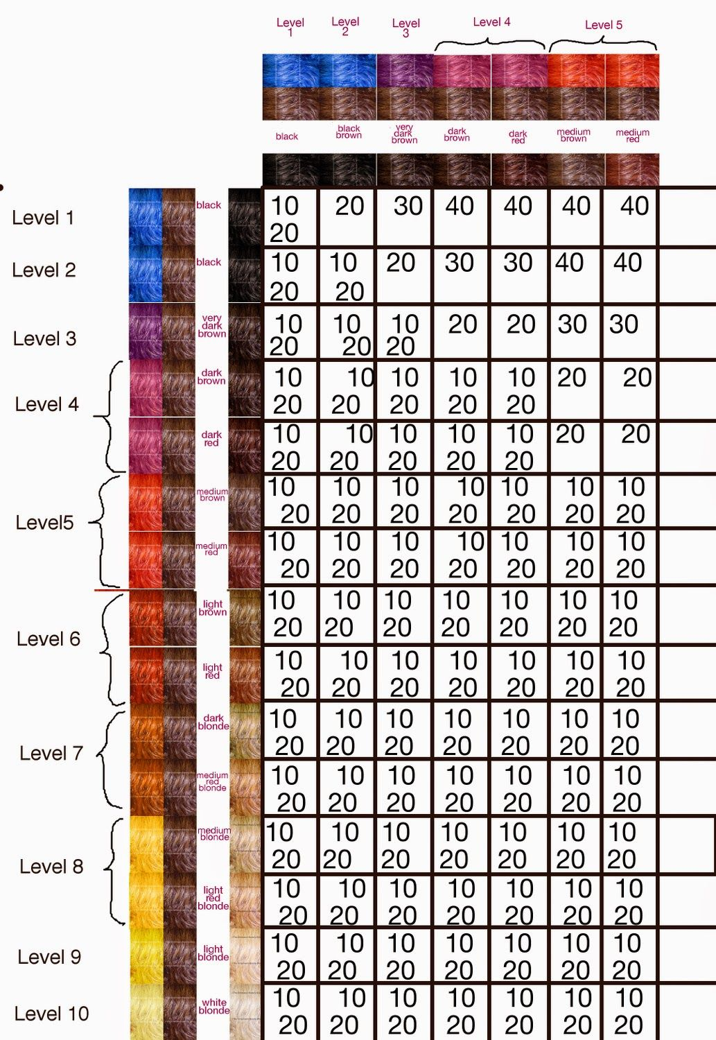 All That Is Hair Color Part 5 Haircolor Formulas And The Developer The Unknown Beauty Blog Hair Color Formulas Hair Color Hair Levels