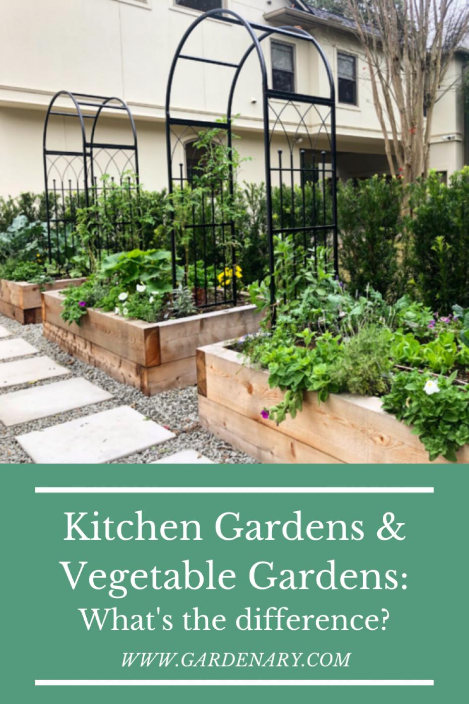 Kitchen Garden vs. Vegetable Garden • Gardenary   Garden layout ...