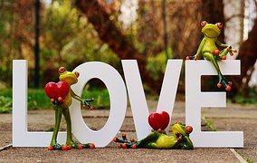 Rãs, Par, Amor, Dia Dos Namorados, Pose