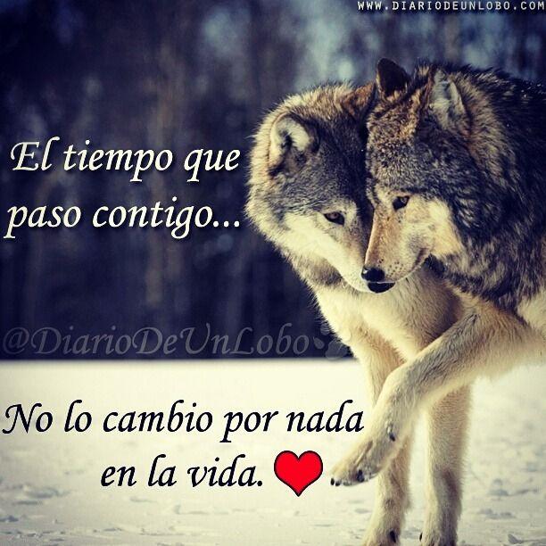 Resultado De Imagen Para Lobos Frases Wolfs Pinterest Frases