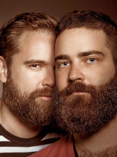 Gay beard guys