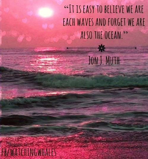 Lost My Heart On The Ocean Quote Hawaiian Quote Inspiring Quotes
