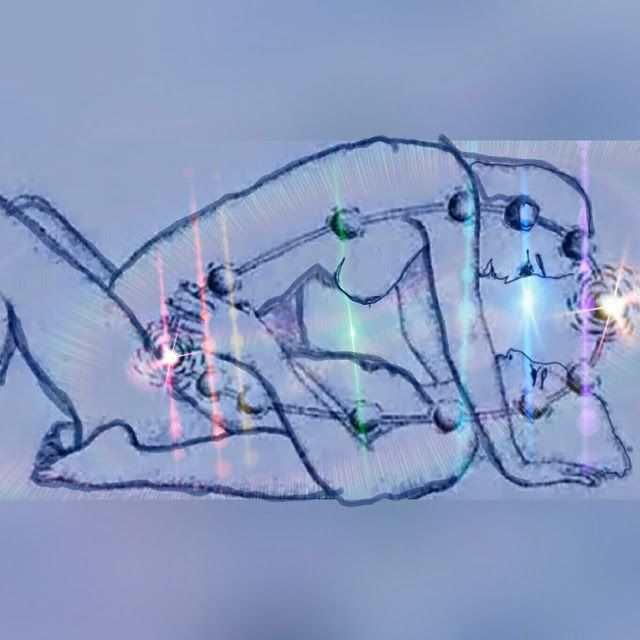 Resultado de imagen para posiciones sexuales kundalini