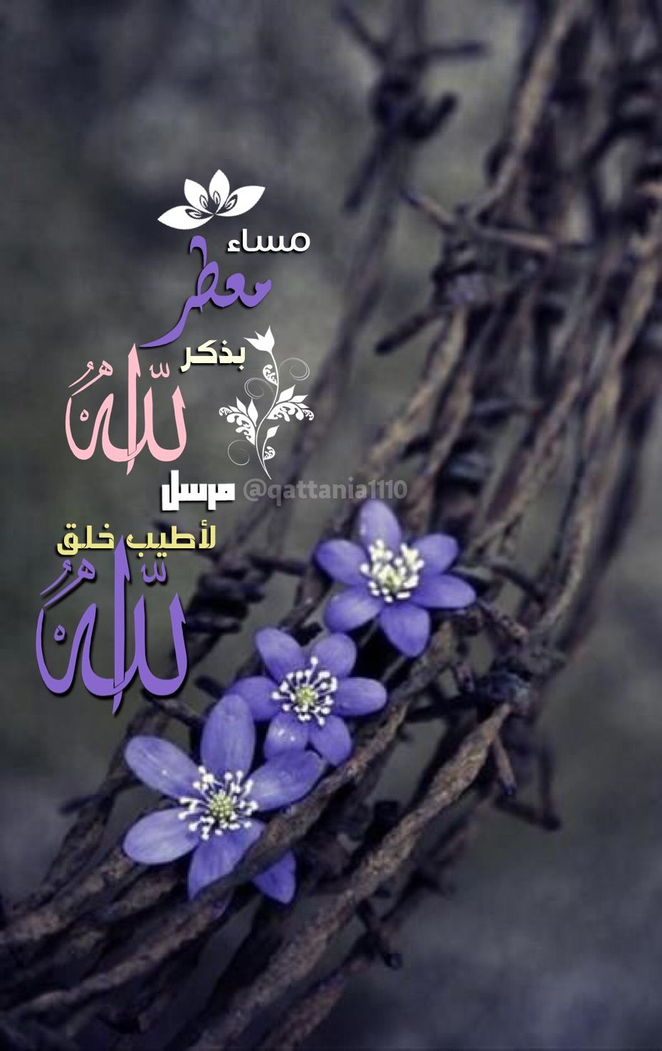Pin By A H On Pinterest Islam Allah And Islam Quran