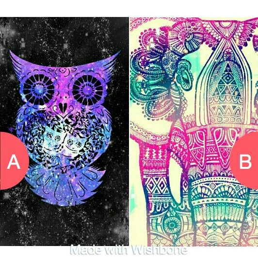 Which wallpaper would you use