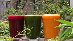 SOUEN - Macrobiotic, Natural Organic Food