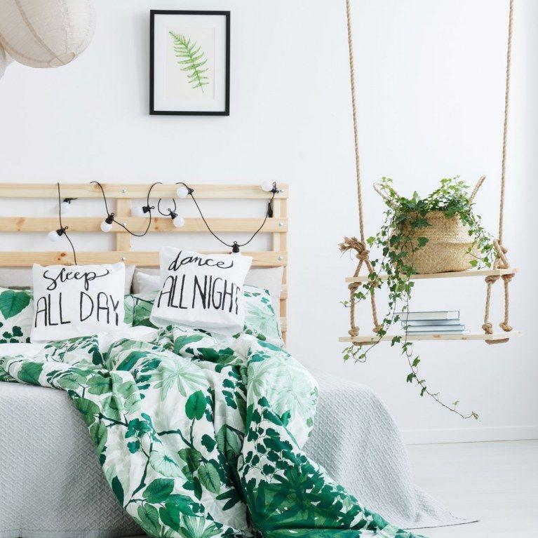 Endlich wieder Durchschlafen! 7 luftreinigende Pflanzen