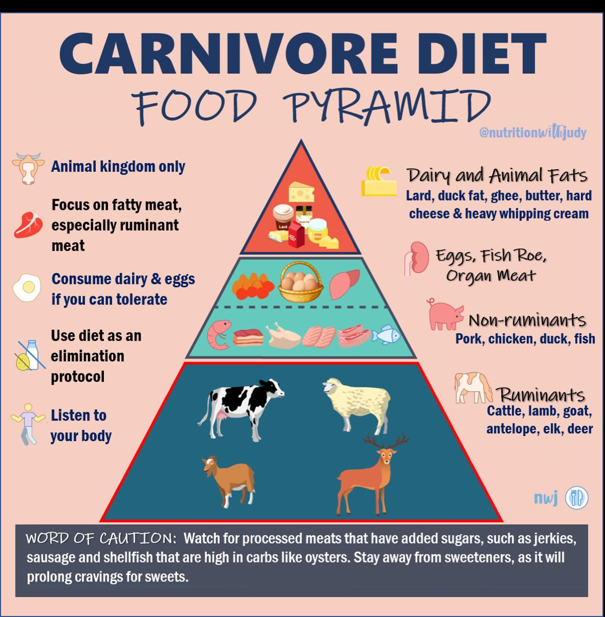 The Nutritionist S Guide To The Carnivore Diet A Beginner S Guide Meat Diet Zero Carb Diet Lion Diet