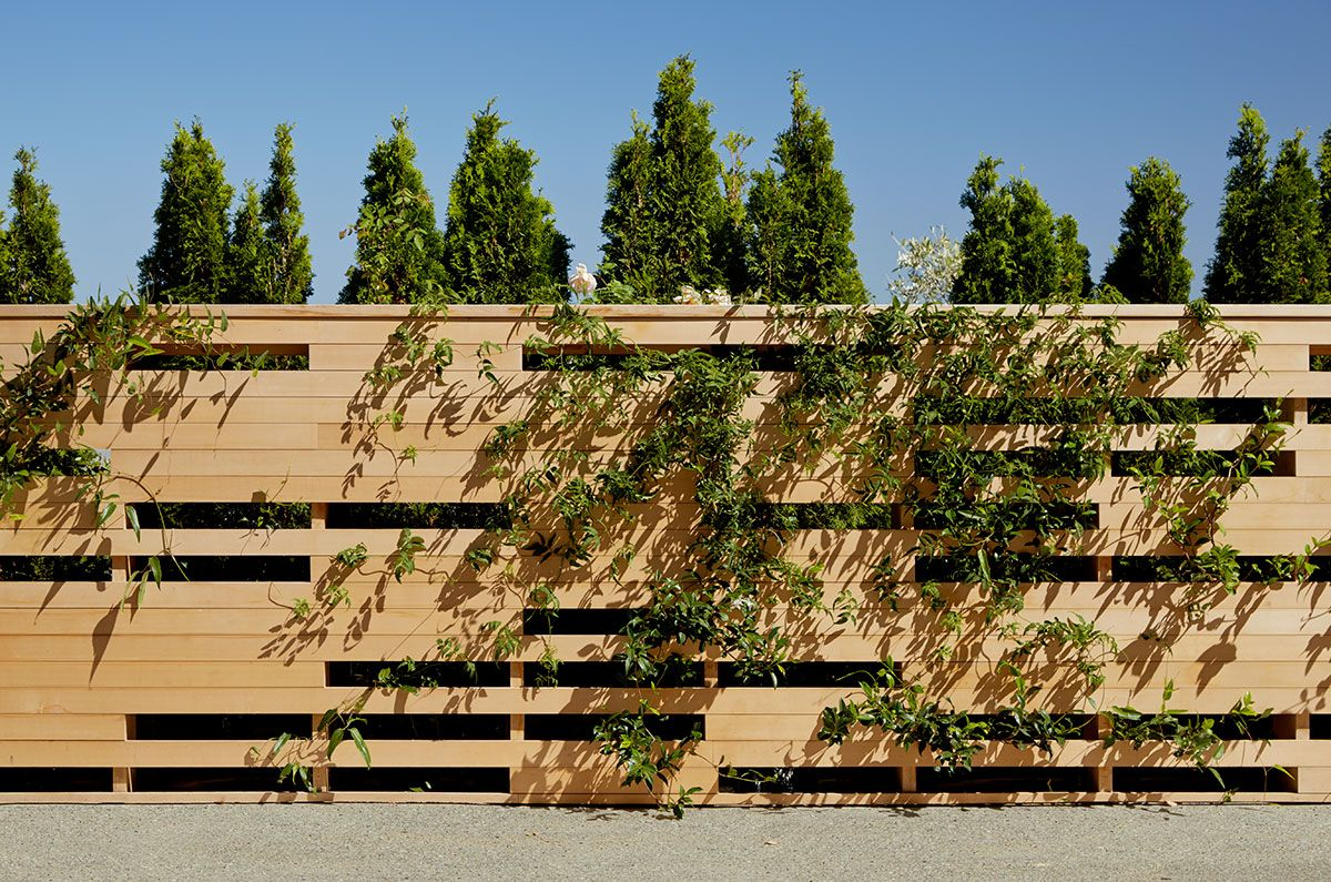 scott lewis landscape architecture / hillside residence, sausalito ...