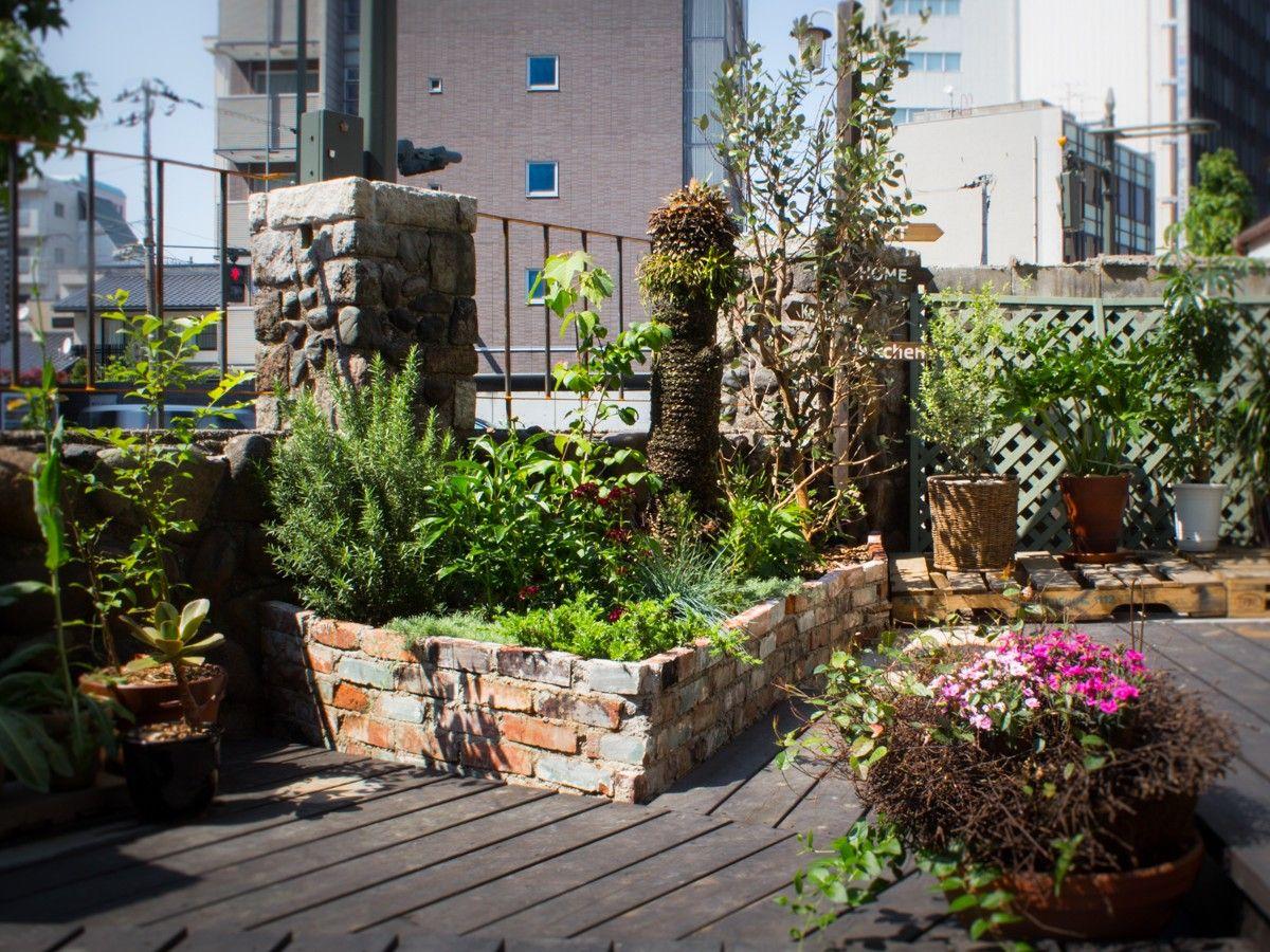 plat home gardening