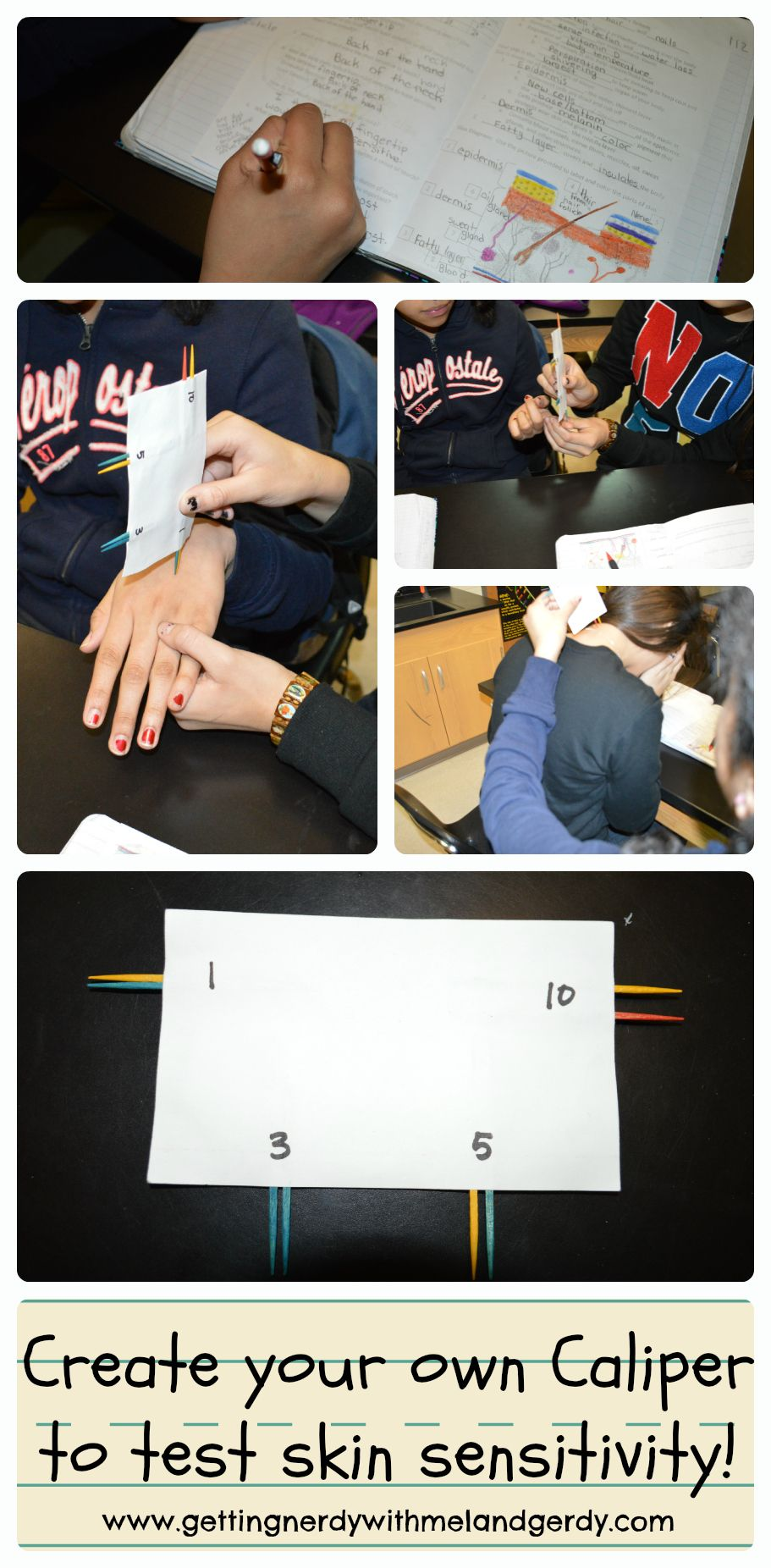 Integumentary System | Getting Nerdy Science Products | Pinterest ...