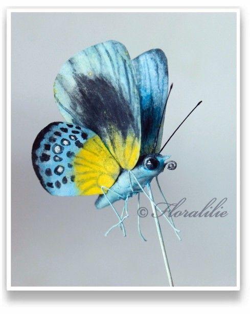 Schmetterlinge - floralilies Zucker-Seite!