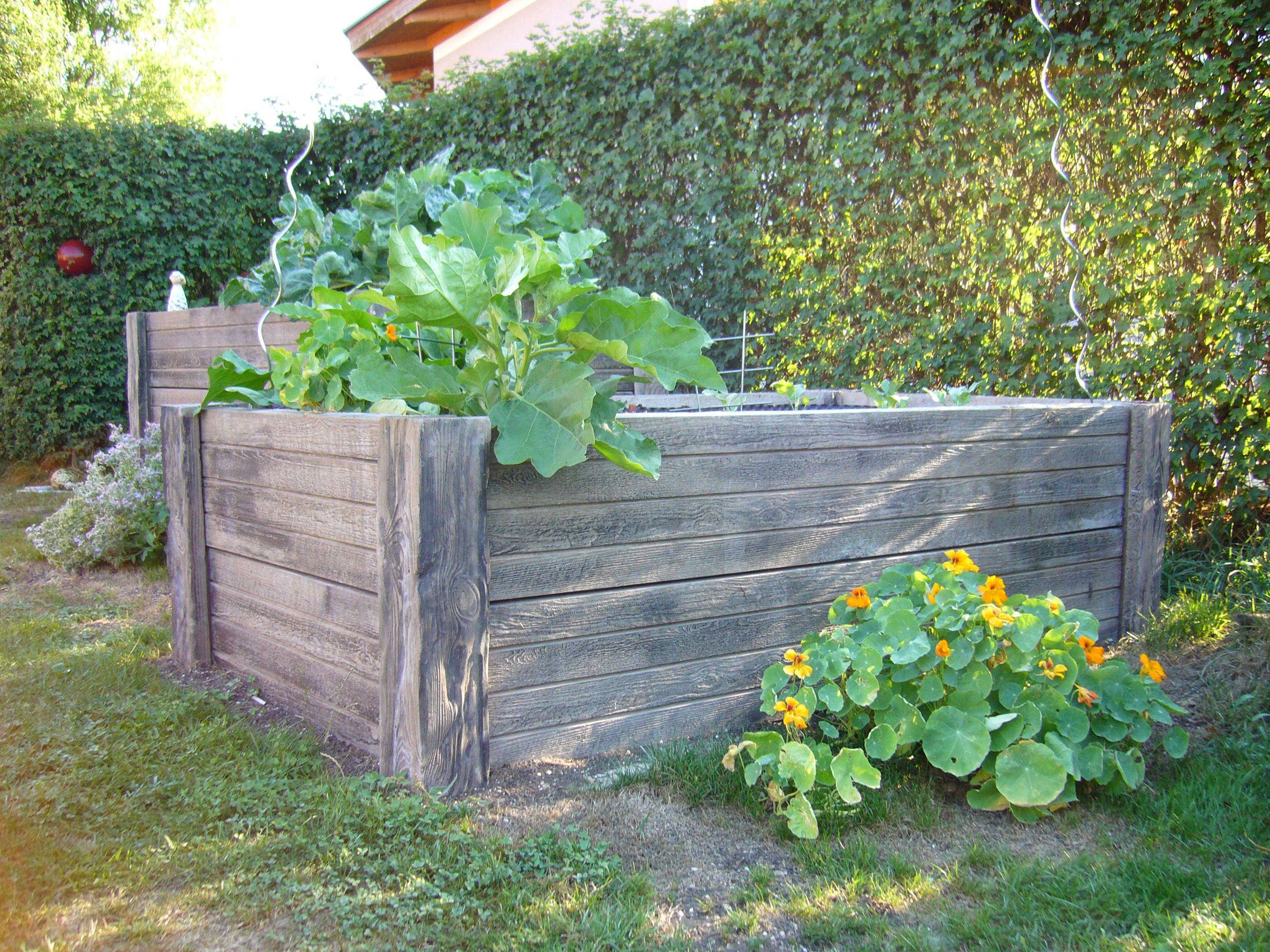 Hausler Versteinertes Holz Hochbeet Von Echten Holz Kaum Zu