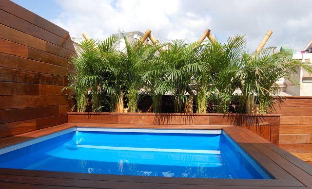 Guia de jardin terraza con piscina jardin azotea for Decoracion patio con piscina