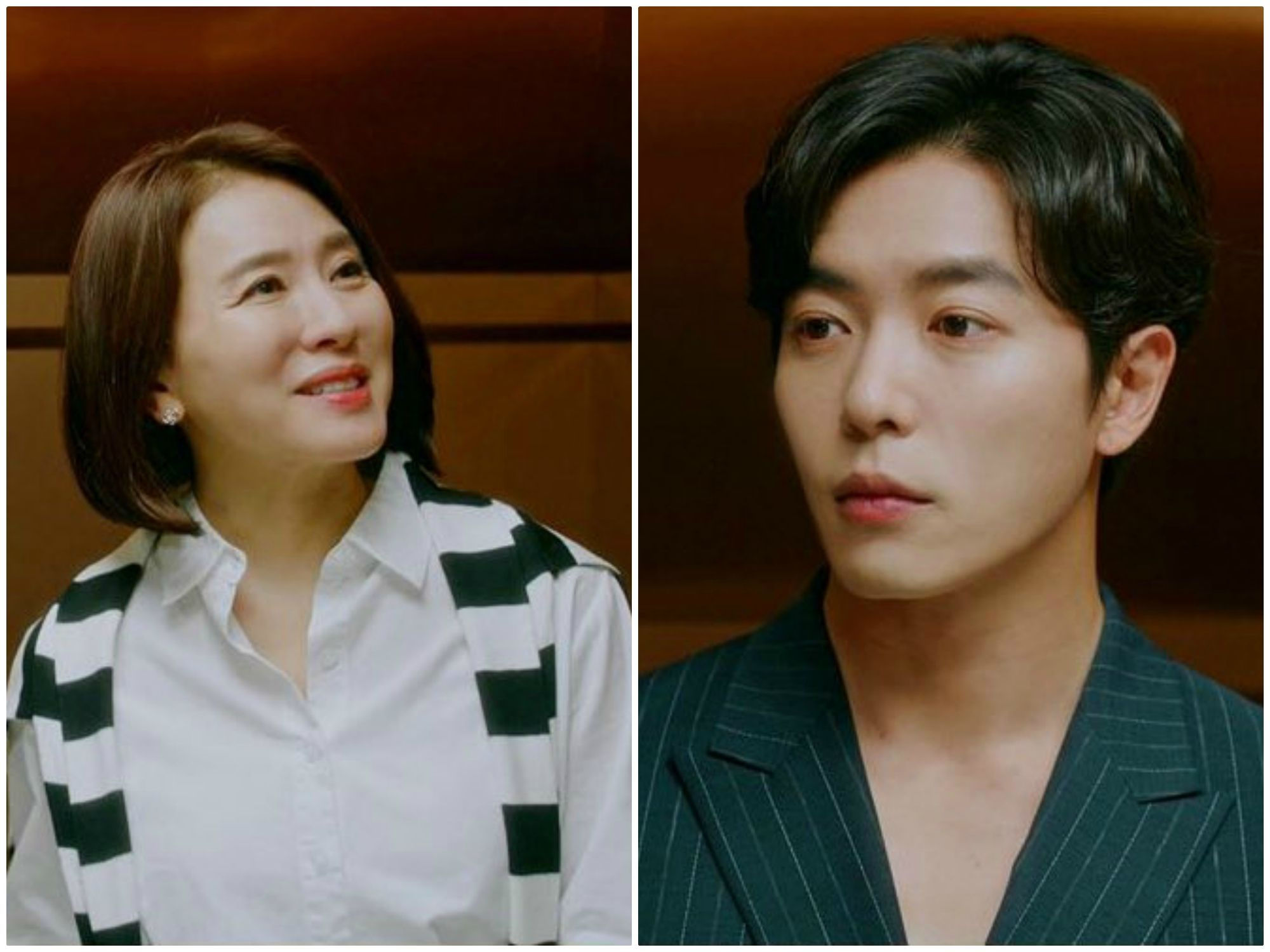 'Her Private Life' Kim Jae Wook meets again Lee Il Hwa - his lost mother