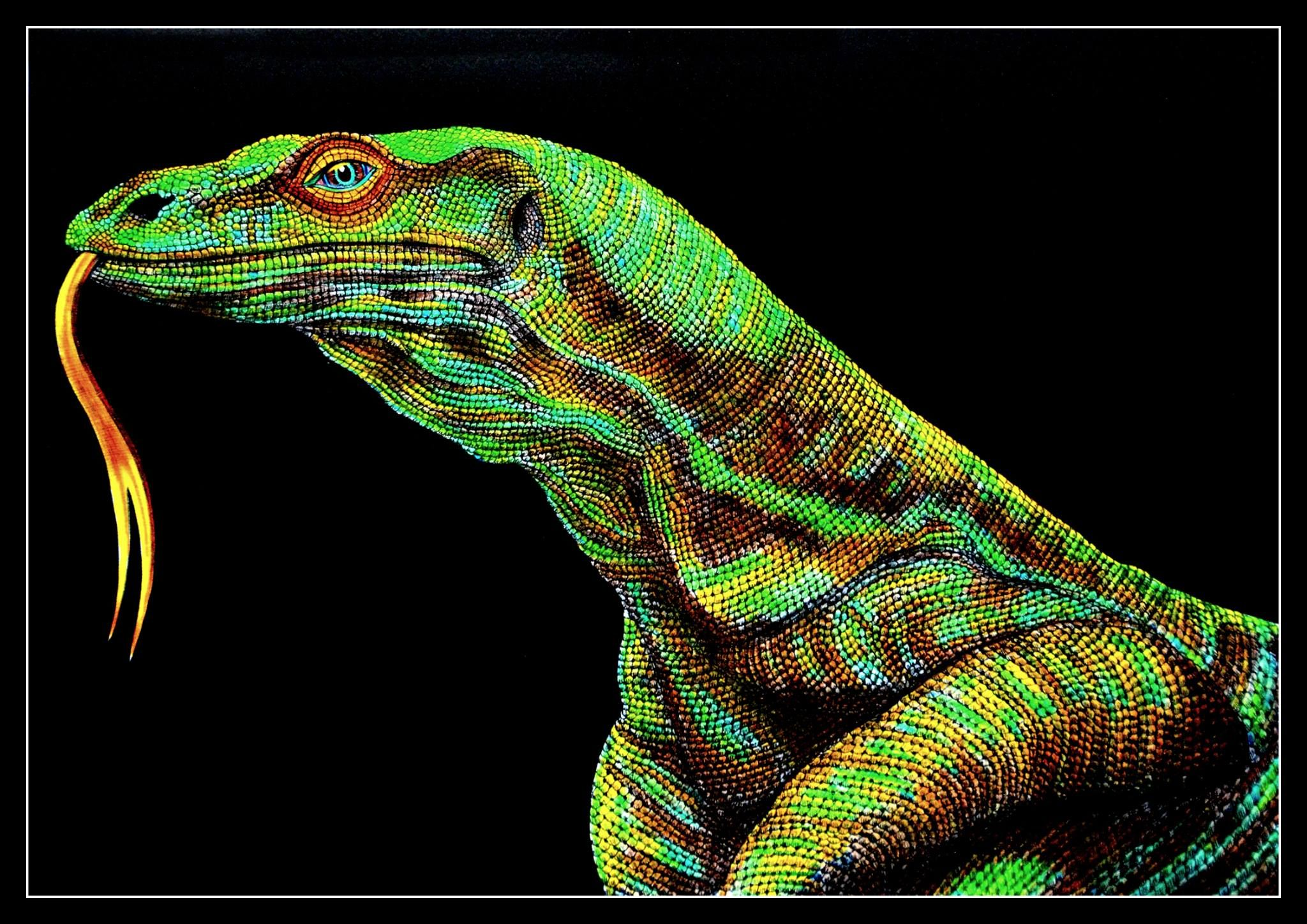 Komodo Dragon by Trevor Grant | Intricate Ink: Animals In Detail ...