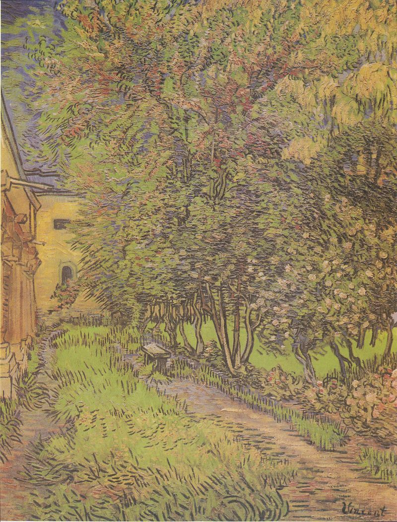 Arte Abstracto Hospital Vincent Van Gogh Garden At Saint Paul Hospital Art Pinturas
