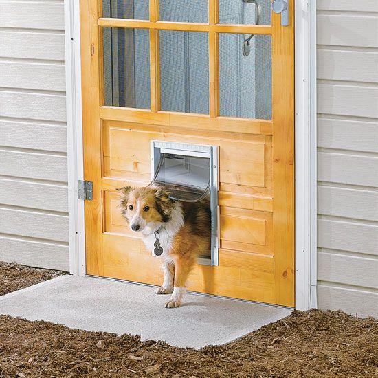 How To Install A Pet Door Farm And Garden Grit Magazine Diy