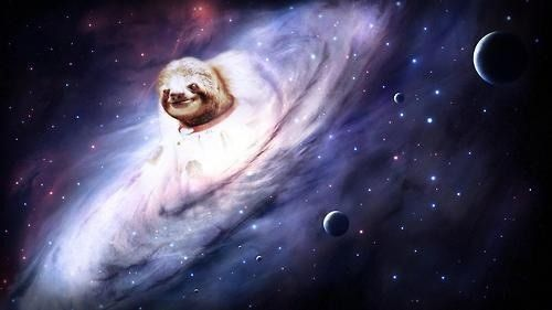 Three Toed Sloth in Space Sloth Pinterest Sloth