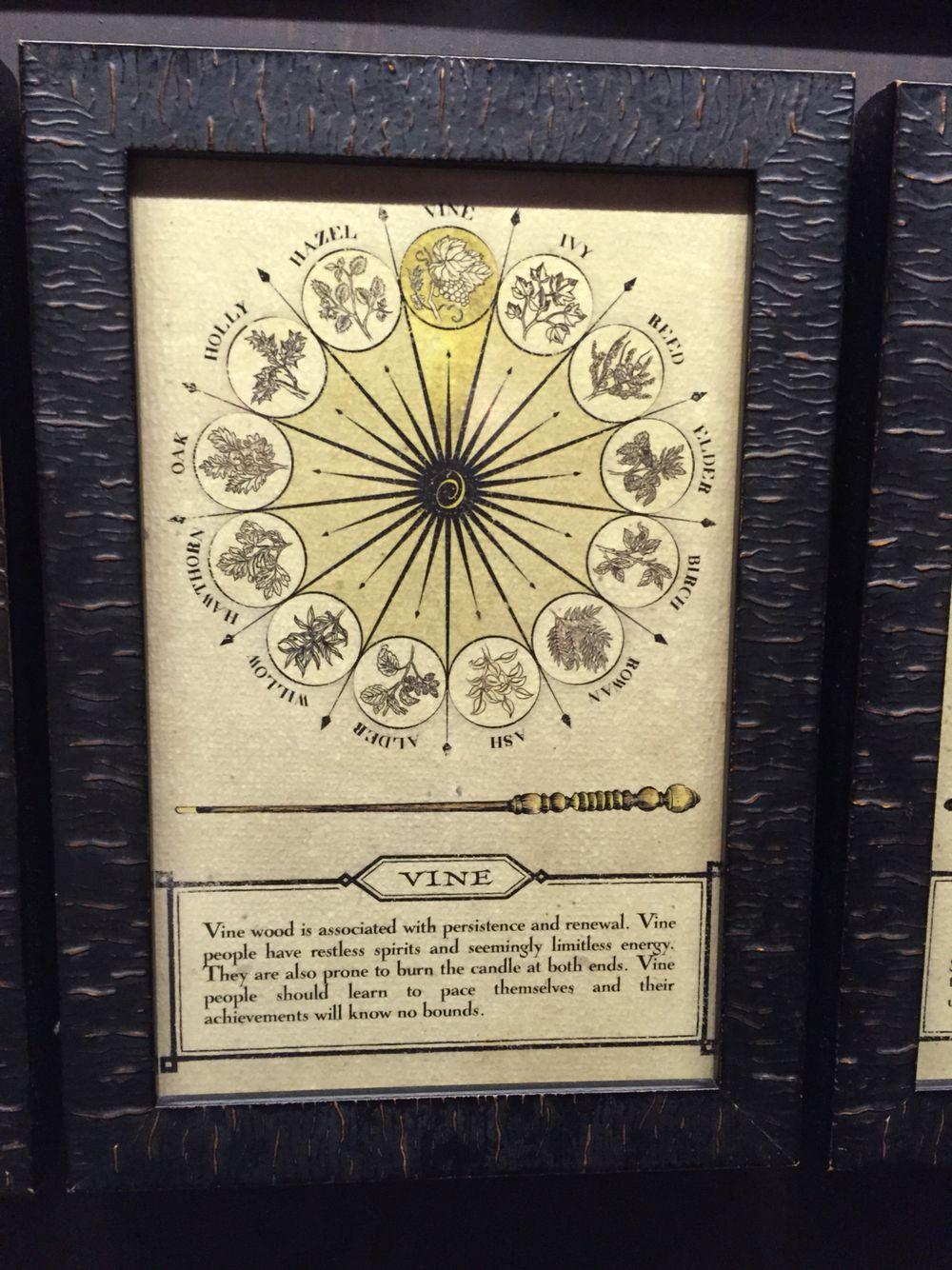 Harry Potter Vine Wand Description Harry Potter Wand Harry Potter Vines Wands