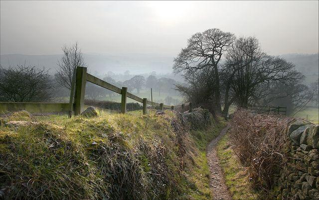 The path to Bolton Abbey by bingleyman2, via Flickr