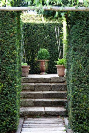 Still Life in the Garden | Garden stairs, Formal gardens, Garden