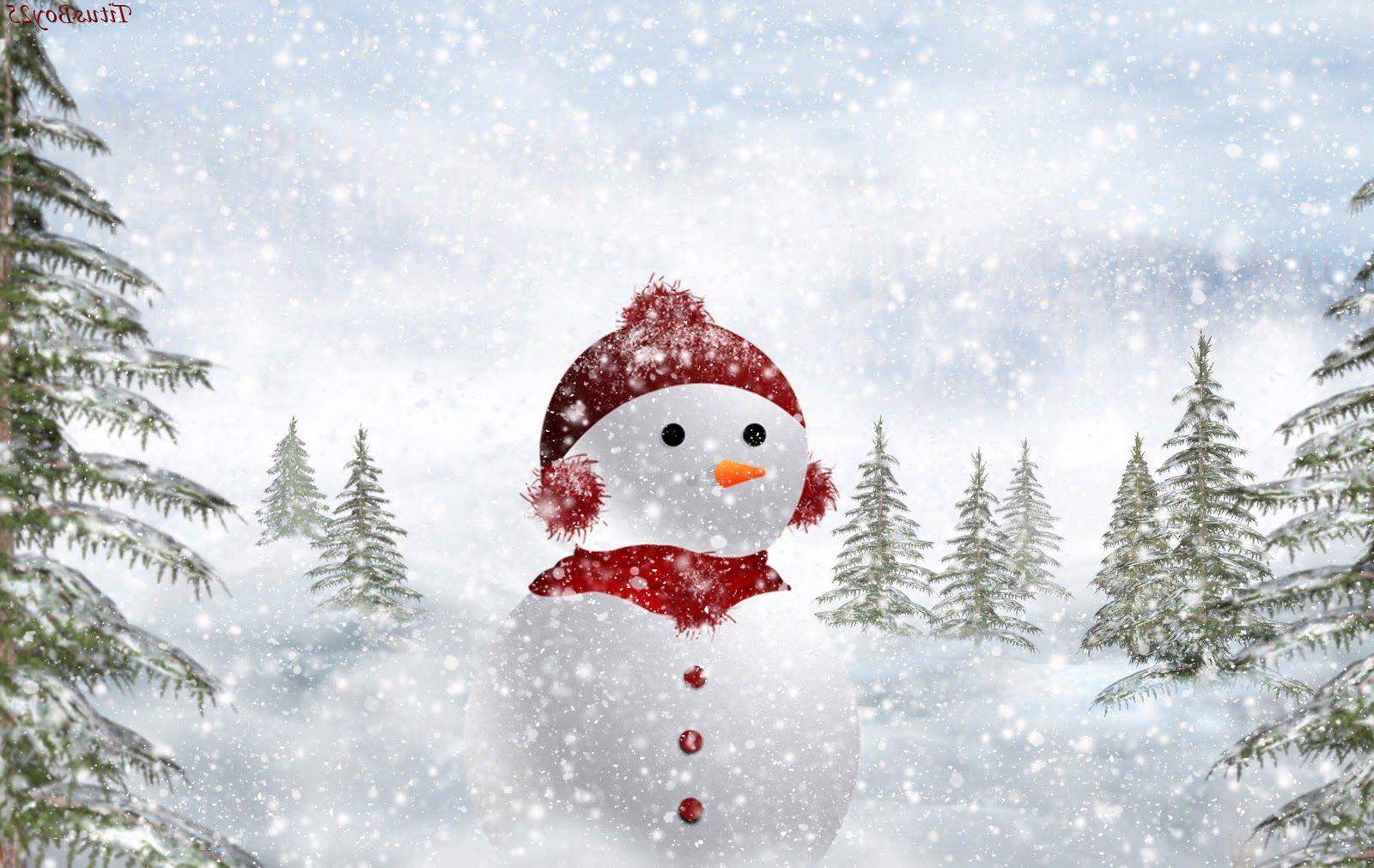 Best Top Desktop Snowman Wallpapers Hd Wallpaper Picture Image 13 1600x1011 Pixels