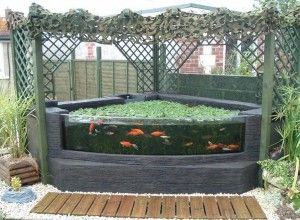 Domestic pond with formed acrylic glazing hydroponics for Outdoor aquarium uk