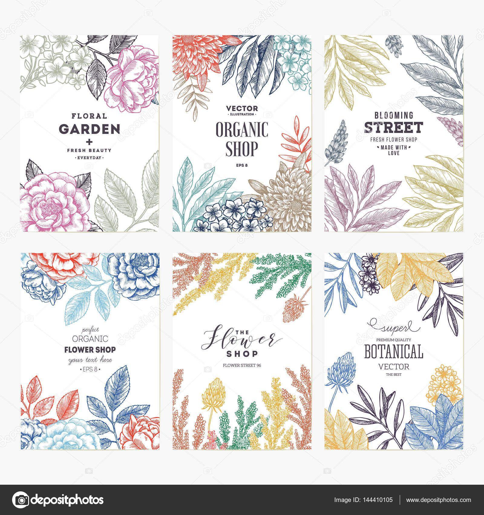 Descargar - Plantillas de diseño floral de la tarjeta. Colección ...