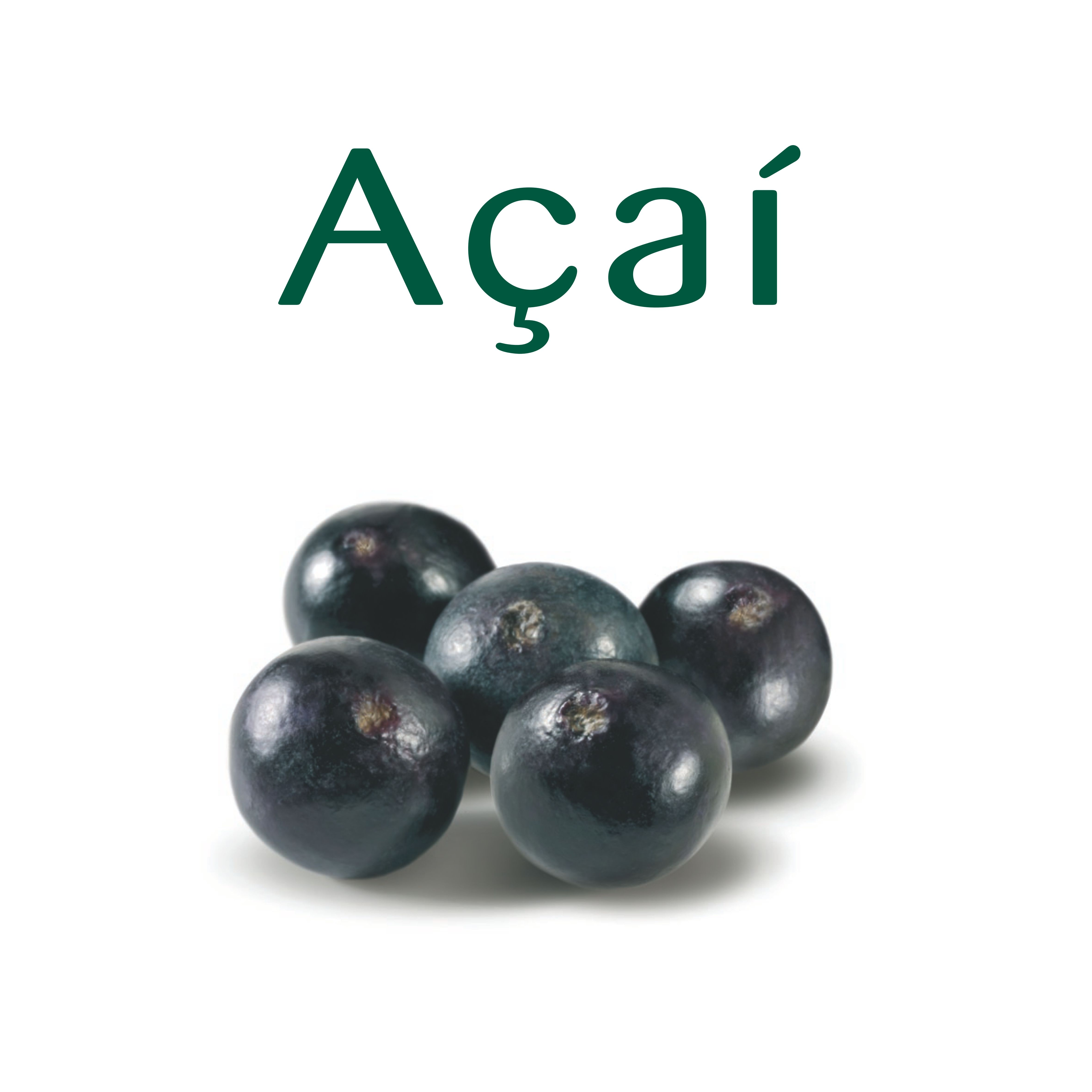 """With strong energizing and antioxidant action (about 2x blueberry), this berry from Amazonas is considered a """"super food"""". Rich in flavonoids (hence its violet color) and fatty acids, it is also a source of iron and vegetal sterols."""