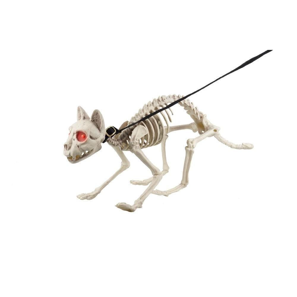 Animated Skeleton Cat Leash Lights Sound Halloween Party Prop ...
