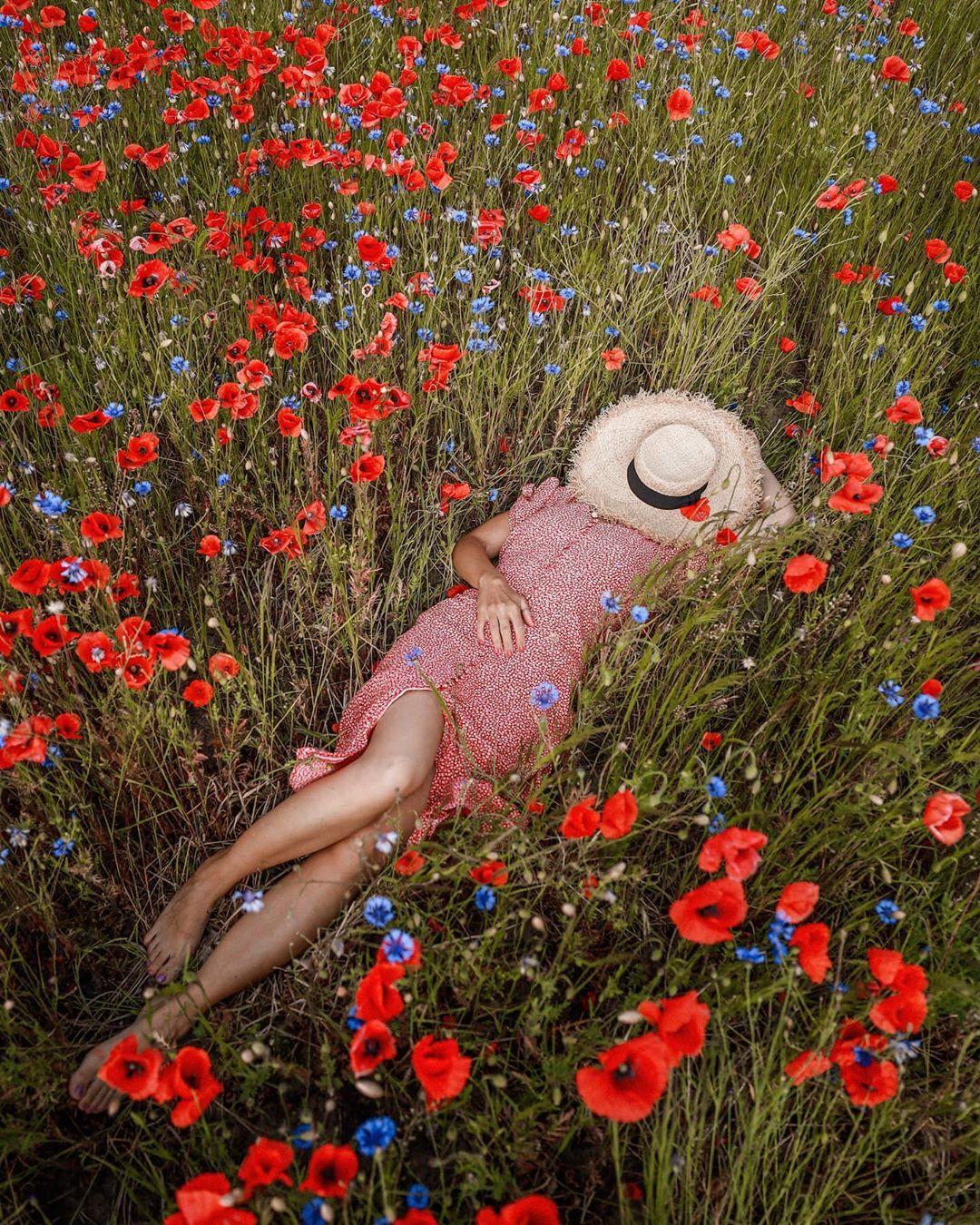 """Stefanie on Instagram: """"Das wäre ein perfekter Start in eine neue Woche ❤🌺🌸🌺❤🌺🌸🌺❤ . . . #floweraddict #hellofrom #justbefloral #träumenerlaubt #thetravelwomen…"""""""