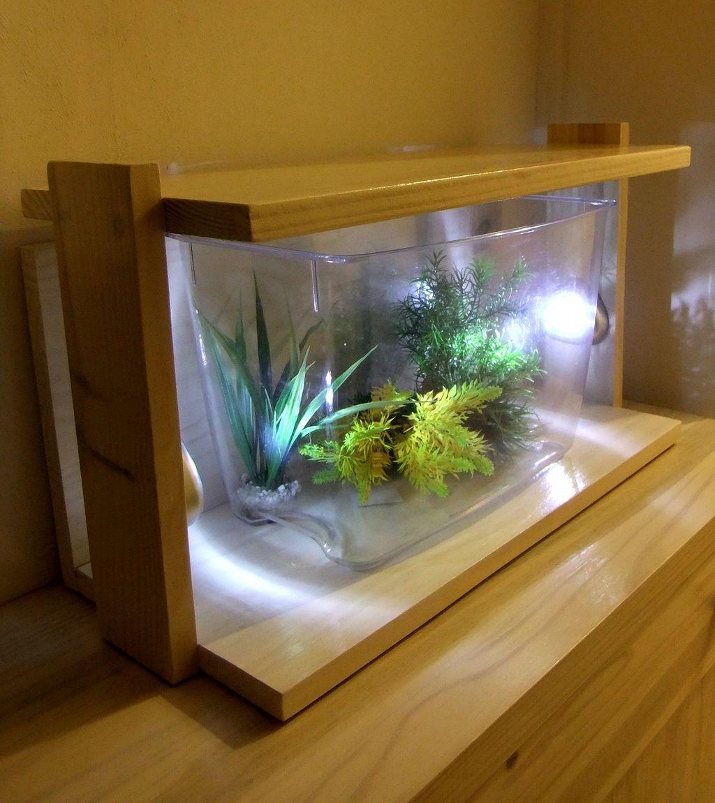 Stunning 30+ Stunning Aquarium Design Ideas For Indoor