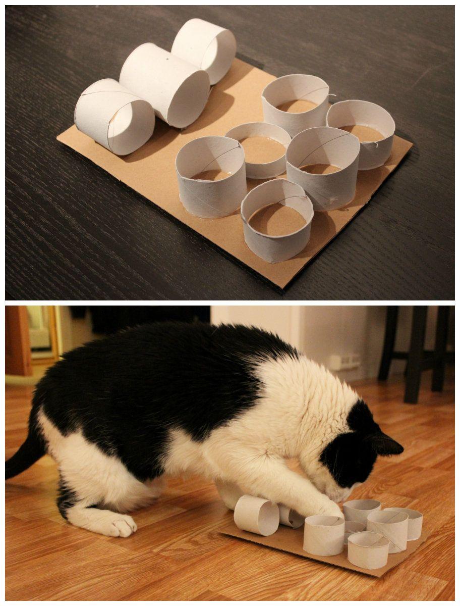 DIY Puzzle Feeder Diy cat toys, Cat puzzle, Pet gifts