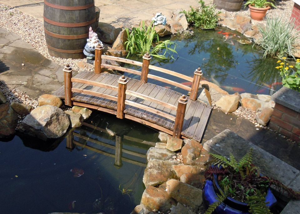Pond with bridge water wizard garden ponds water for Waterfall features for ponds
