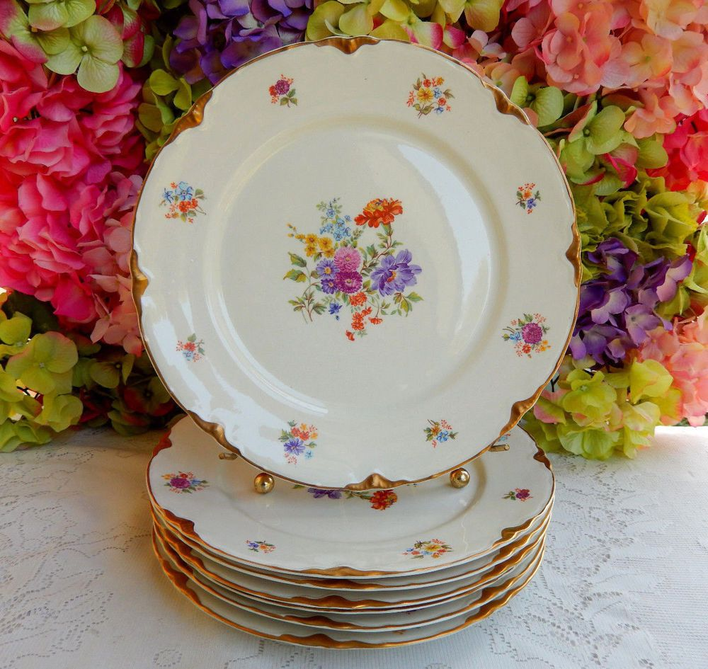 7 Beautiful Vintage Warwick Porcelain Dinner Plates Dresden Bouquet Gold #2090 #Warwick & 7 Beautiful Vintage Warwick Porcelain Dinner Plates Dresden Bouquet ...