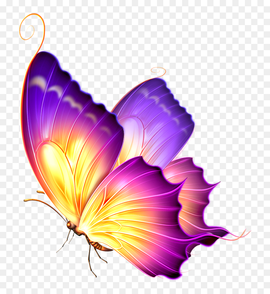 Purple Glow Png Glowing Butterfly Png For Picsart Transparent Png Is Pure And Creative Beautiful Butterflies Art Butterfly Pictures Purple Butterfly Tattoo