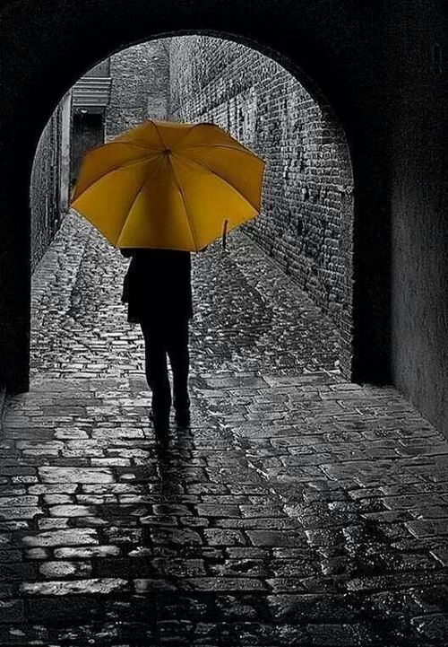 Contrast of bright happy yellow and the gloomy black and white. Really effective coloring