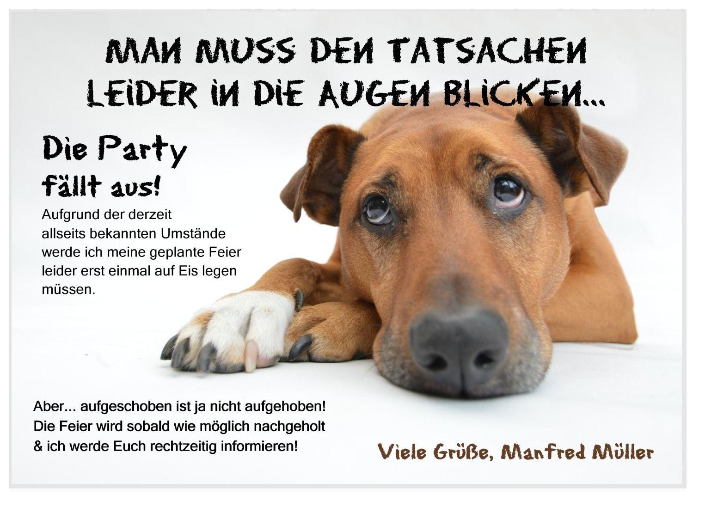 15 X Absagekarte Trauriger Hund Einladung Geburtstag Geburtstag Karte Feier
