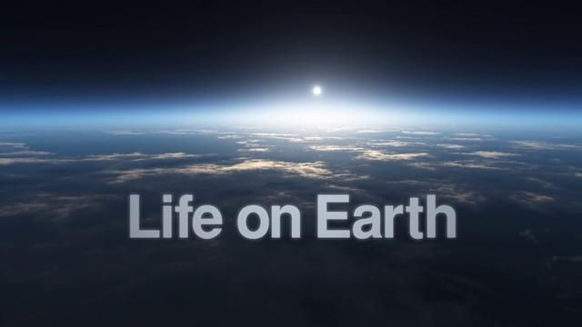Life on Earth by EOWilson Biodiversity Foundation. This Is Biology's Century