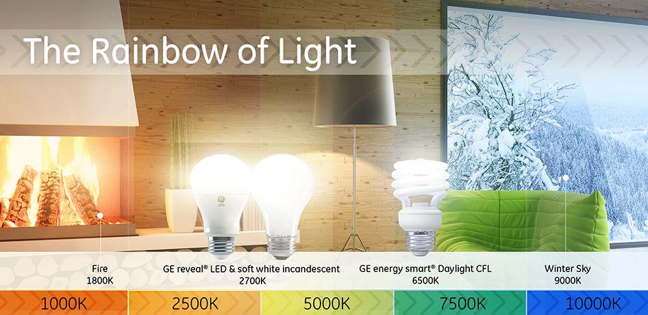 Explore The World Of Color Temperature Lighting Inspiration Energy Saving Light Bulbs Light Bulb Lamp