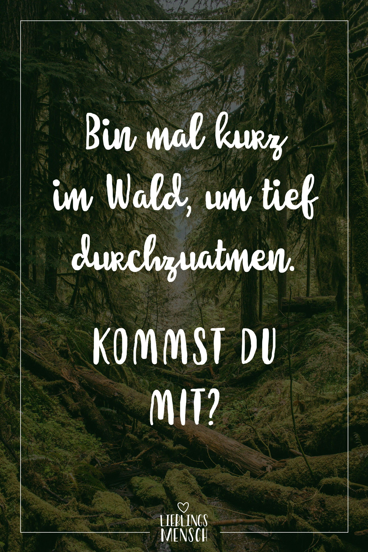 Visual Statements Bin Mal Kurz Im Wald Um Tief